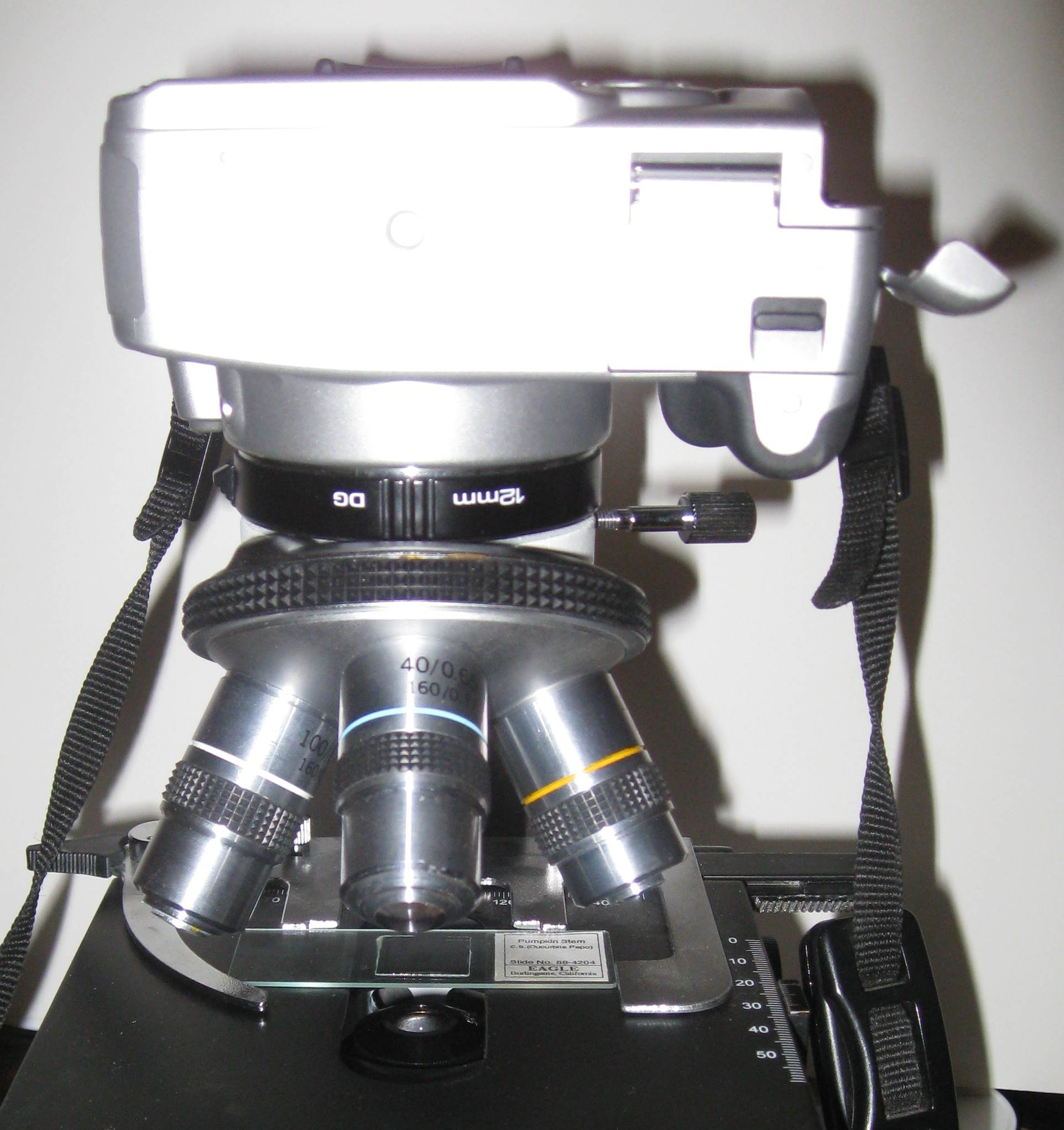 Canon with one extension tube on top of microscope