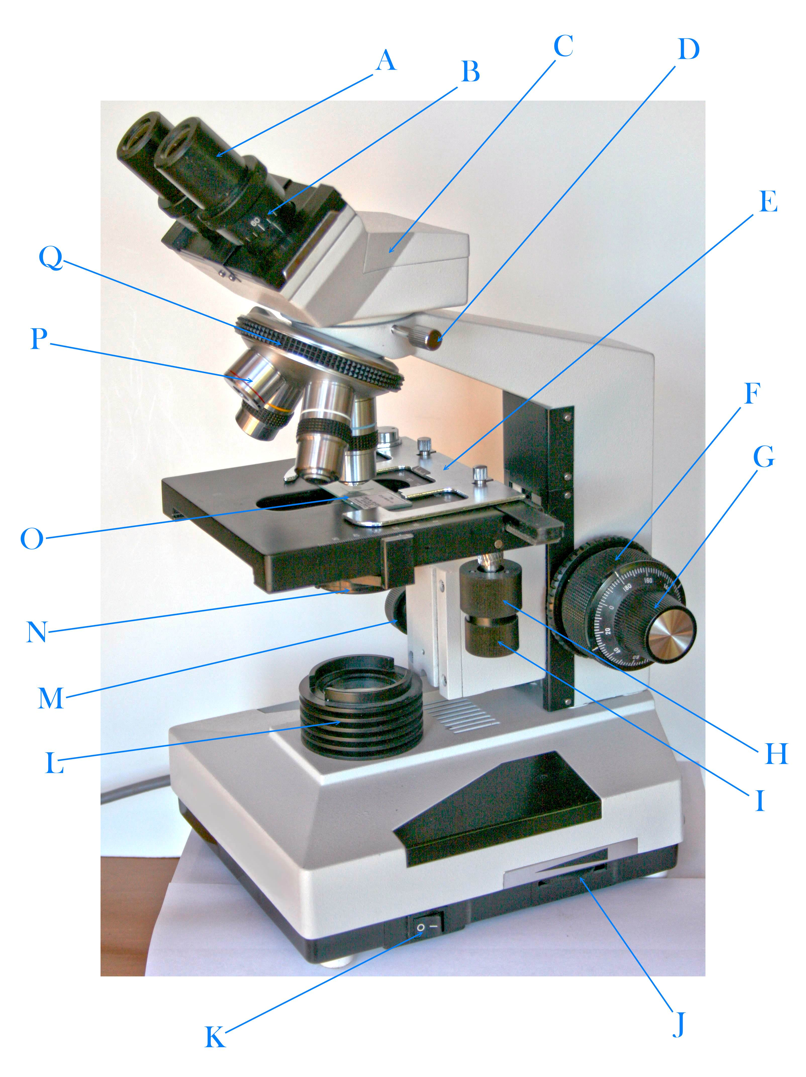 Labeled view of a microscope